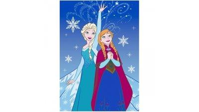 Speelkleed Frozen IJskristal